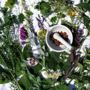 Лечение бронхиальной астмы народными средствами - микстура из трав