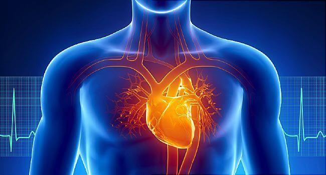 Сердечная астма: симптомы и лечение взрослых
